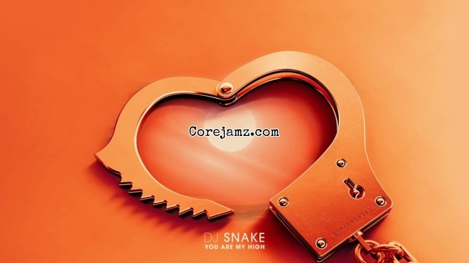 DJ Snake - You Are My High [Mp3 Download]