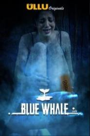 Blue Whale (2021) UNRATED 720p HEVC HDRip Hindi S01 Complete Hot Web Series x265 AAC [350MB]