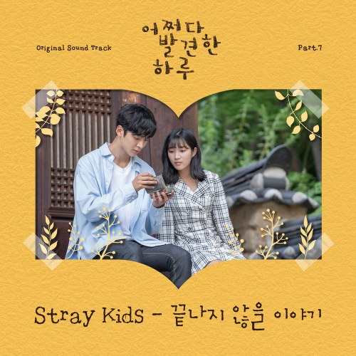 Stray Kids  - Story That Won't End